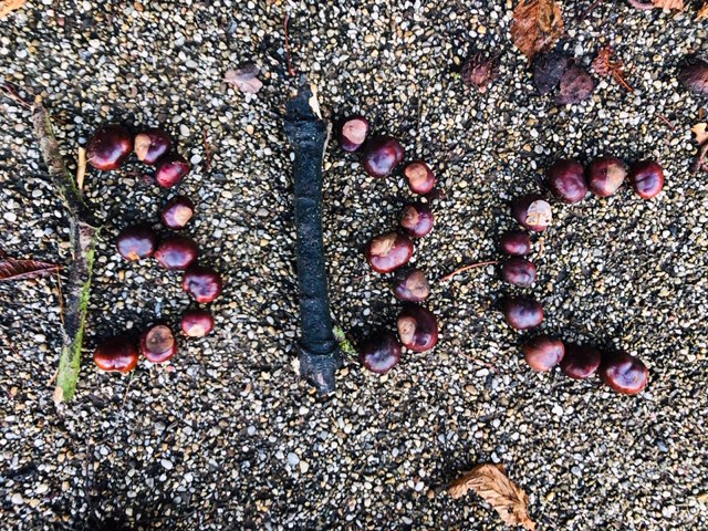 BBC spelt out in conkers and twigs on a gravel background