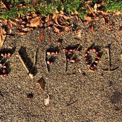 The word 'Suffolk' spelt out in conkers on a gravel path, framed with horse chestnut leaves