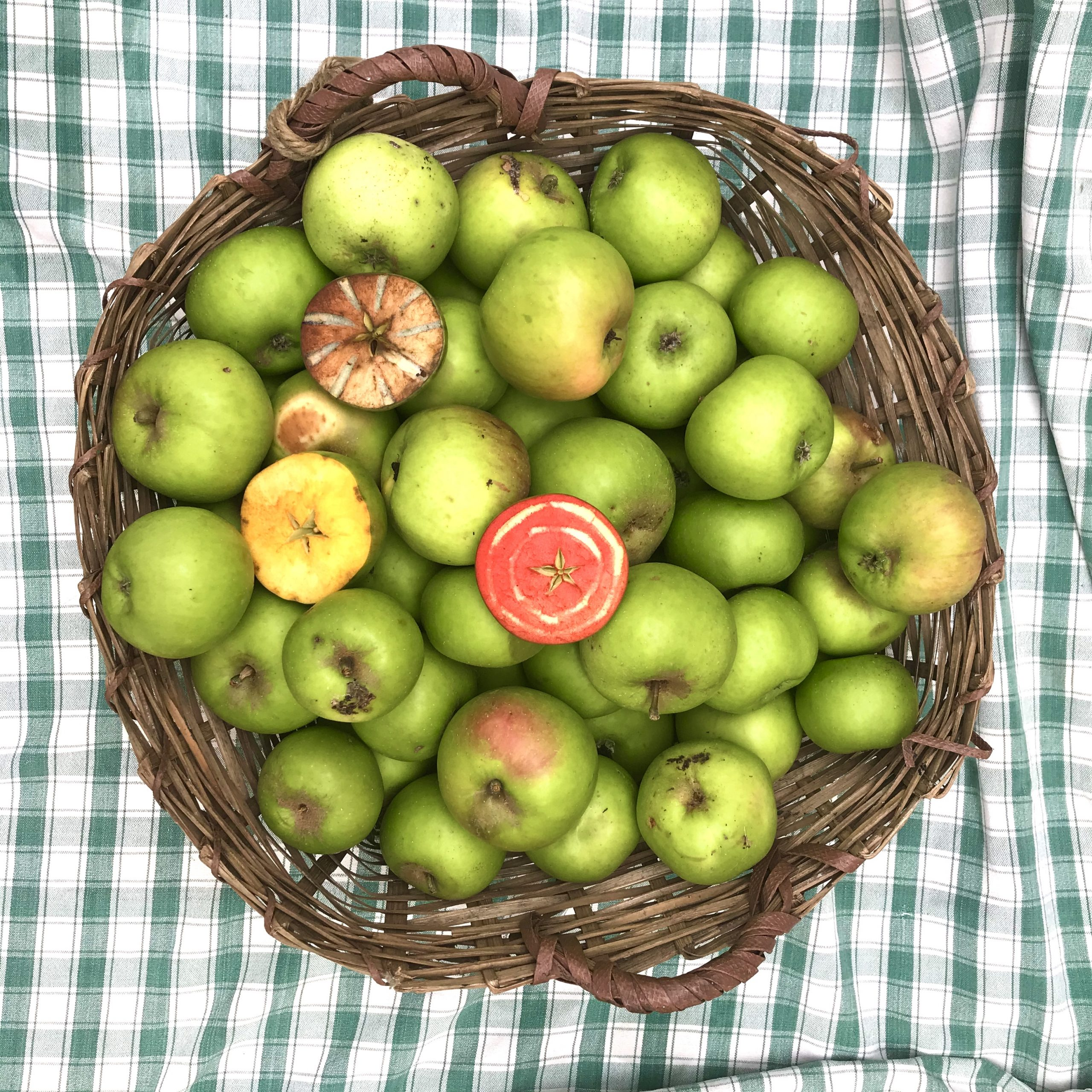 A basket of green apples on a chequered cloth
