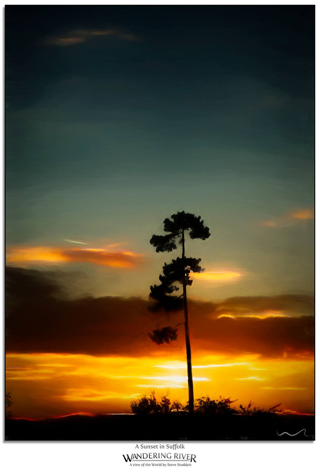 A lone pine silhouetted against a golden sunset